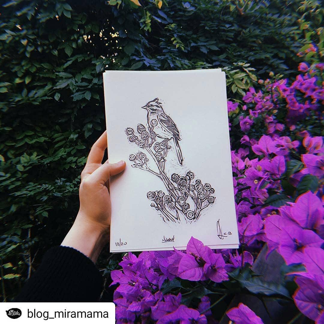 Mañana a las 10:30 se presenta esta joyita en @mundopedal @blog_miramama • • • • • Michi-messi está feliz, todos felices @michimc13 ・・・ A partir de las fotos de @andreasbarbie , @carocurbelo tuvo la genial idea de hacer un librito para pintar, para el cual realicé las ilustraciones y luego @caja_baja hizo este grabadito del chingolito de tapa. (Me encanta esta serie de eventos afortunados!) ?? – Los esperamos el sábado 6 a las 10:30hs para la presentación del libro en @mundopedal y empezar a darle color a !! ??✨ – Pd: después de la presentación habrá un recorrido por el parque para avistamiento de aves con Agus de @aves_uruguay ??